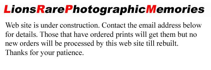 LionsRarePhotographicMemories Web site is under construction. Contact the email address below for details.